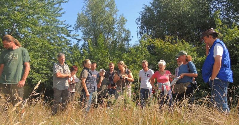 """""""Insektensommer"""" und Biodiversität - Exkursionen im TPO"""