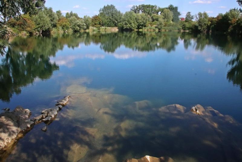 Die Libellen im Technologiepark Ostfalen